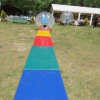 Bumper Ball 4